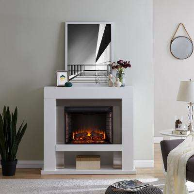 Allianne Stainless Steel 44 in. Electric Fireplace in White and Stainless Steel