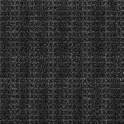 Serenity - Color Black Ice Pattern Indoor/Outdoor 12 ft. Carpet
