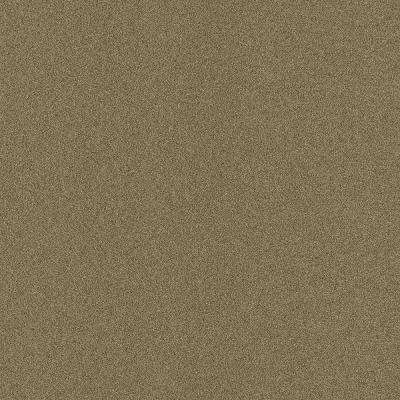 Arcadian - Color Taupe Texture Indoor/Outdoor 12 ft. Carpet