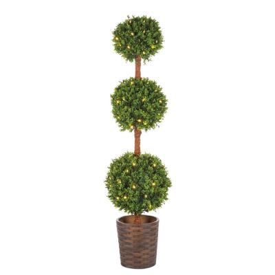 4.5 ft. Potted Triple Ball Boxwood Tree