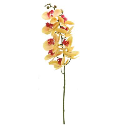 3D Silk Phalaenopsis Orchid - Orange