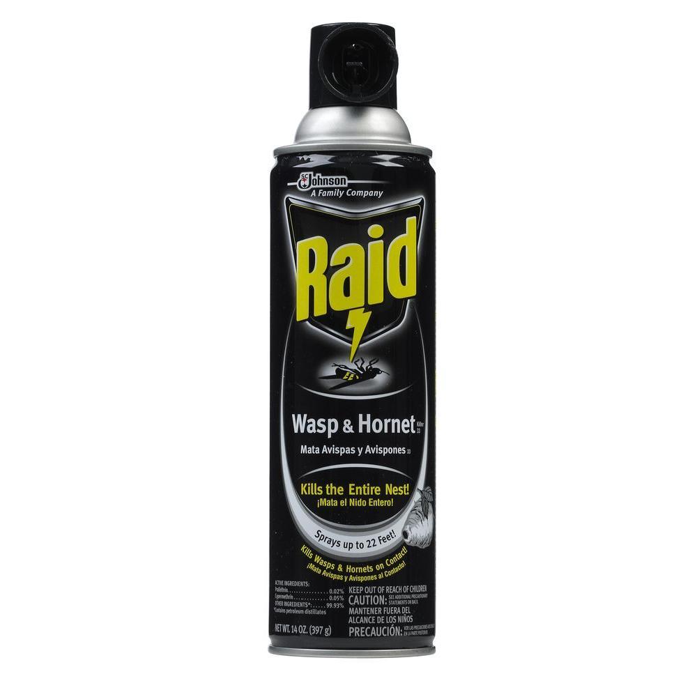 Raid 14 oz. Wasp and Hornet Aerosol Spray Killer (Case of 12)