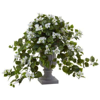 27 in. Bougainvillea with Decorative Urn