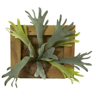 13 in. Staghorn Artificial Plant in Wood Hanging Frame