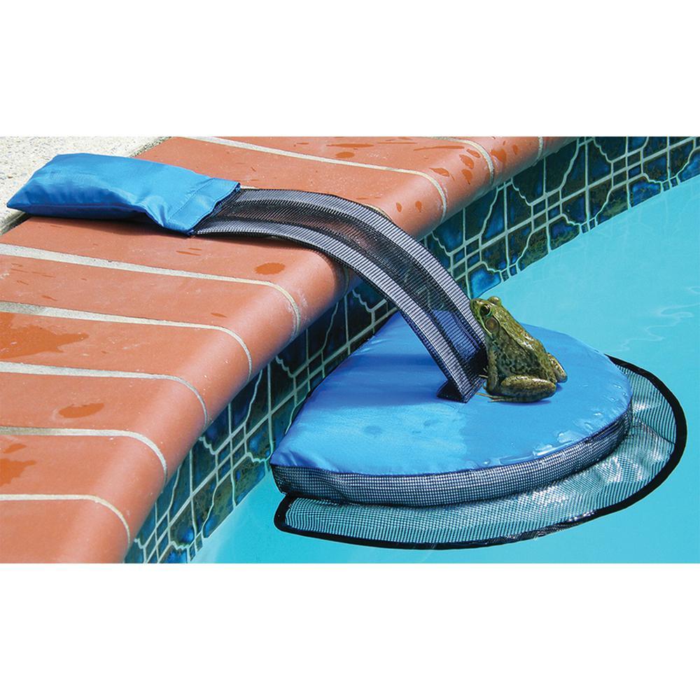 Blue Froglog Critter Saving Escape Ramp 70200sl The Home