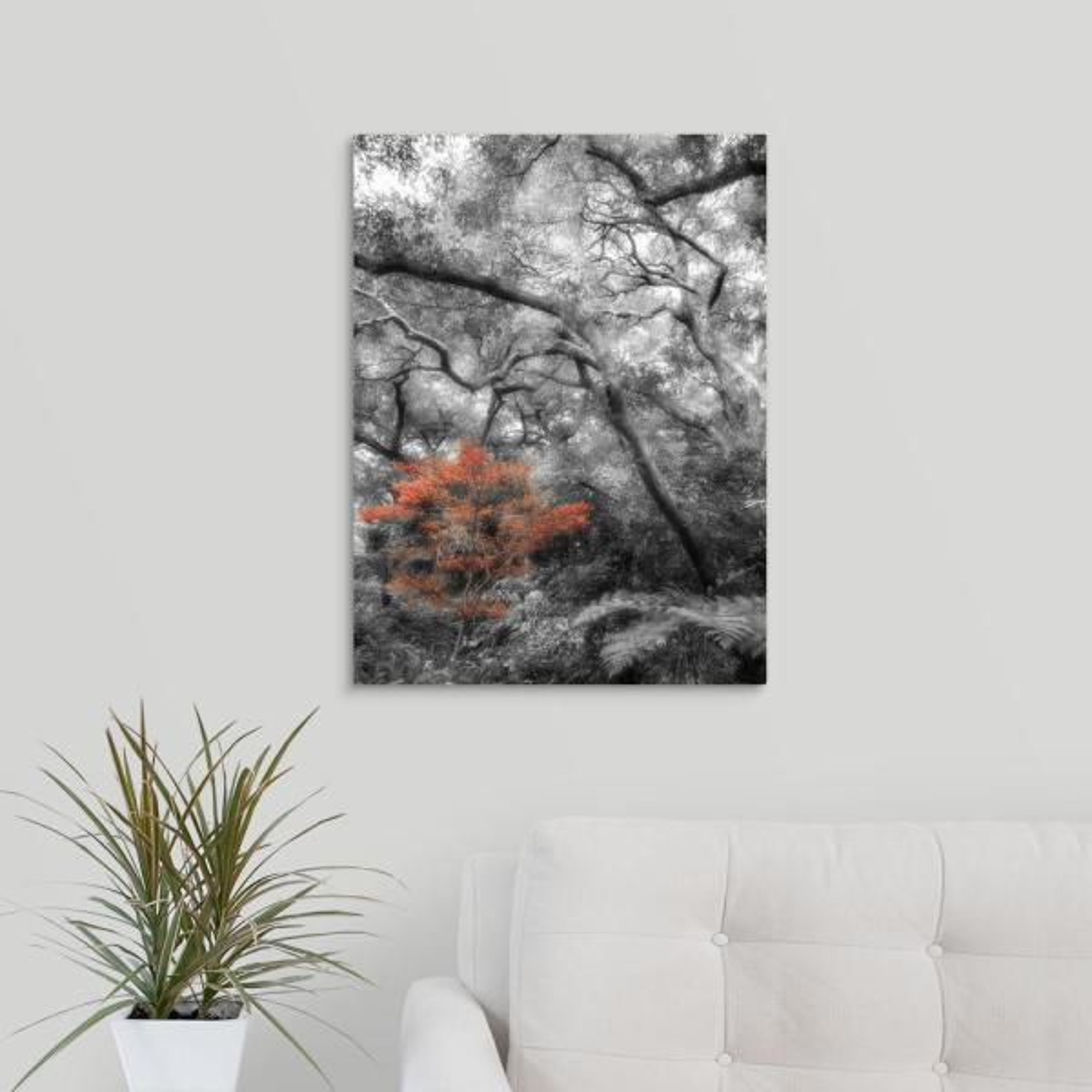 BLACK WHITE TREE ART PRINT Poster Home Decor Wall Trees Picture Artwork 10 SIZES