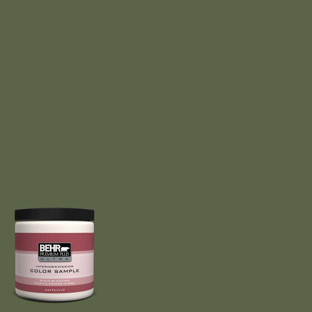BEHR Premium Plus Ultra 8 oz. #ECC-38-3 Sea Fern Interior/Exterior Paint Sample