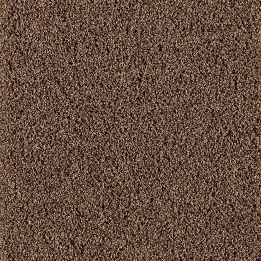 Platinum Plus Transcending - Color Early American 12 ft. Carpet