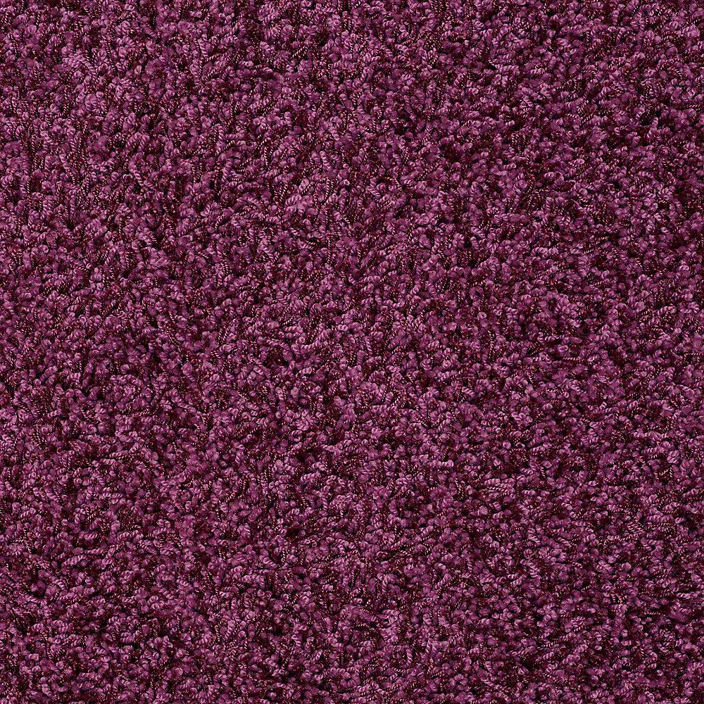 Plum Carpet Ideas