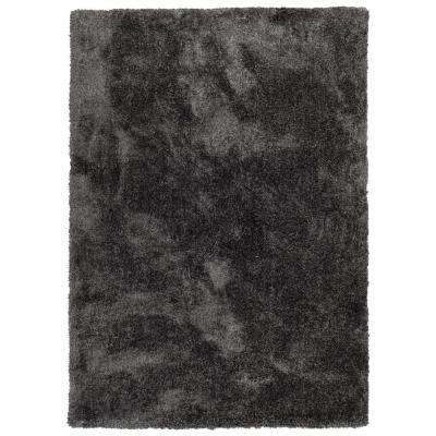 It's So Fabulous Charcoal 2 ft. x 3 ft. Area Rug