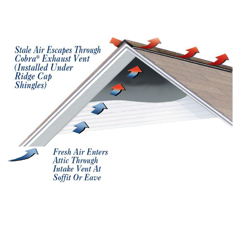 Black Attic Protection Ventilator Ridge Low Profile