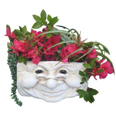 Grandma Violet Ant. 10.5 in. White the Muggly Face Statue Tree and Patio Resin Wall Planter