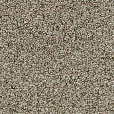 Carpet Sample - Dawson II - In Color Stoney Texture 8 in. x 8 in.