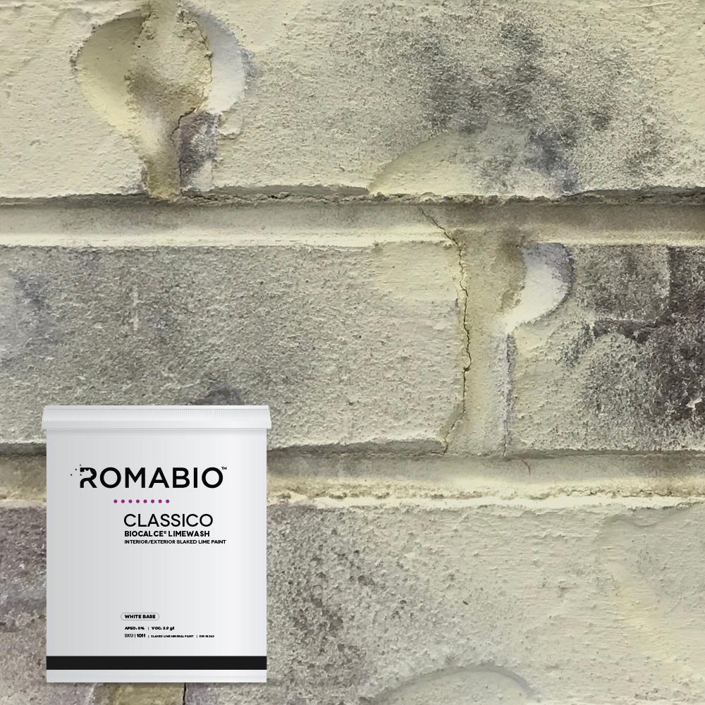 1-qt. Tropea Beige Limewash Interior/Exterior Paint