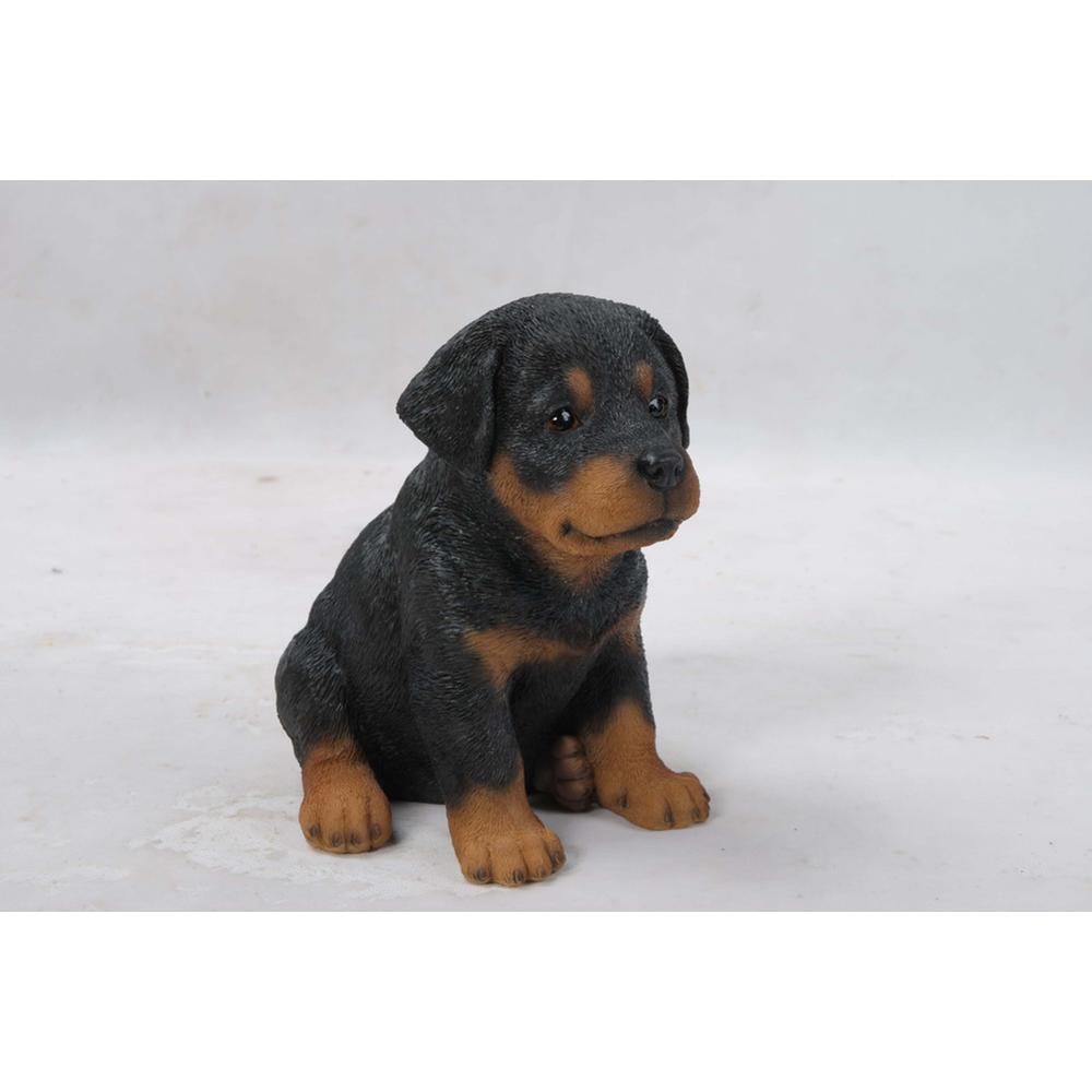 Hi Line Gift Rottweiler Puppy 87771 I The Home Depot