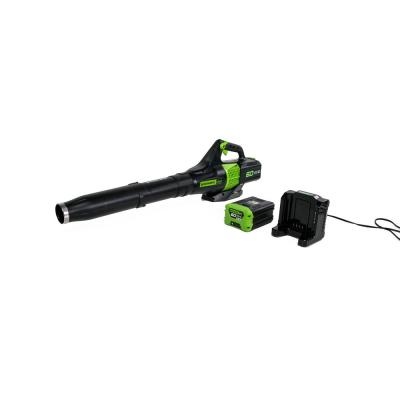 125 MPH 450 CFM 60-Volt Cordless Handheld Leaf Blower with 2.0 Ah Battery and Charger Included