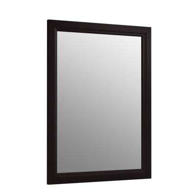 20 in. W x 26 in. H Recessed or Surface Mount Anodized Aluminum Medicine Cabinet with Frame in Black Forest