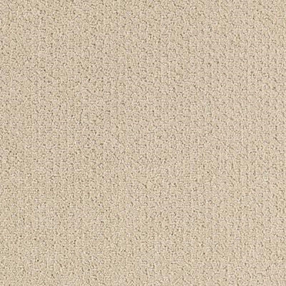 Carpet Sample - Katama II - Color Seashore Pattern 8 in. x 8 in.