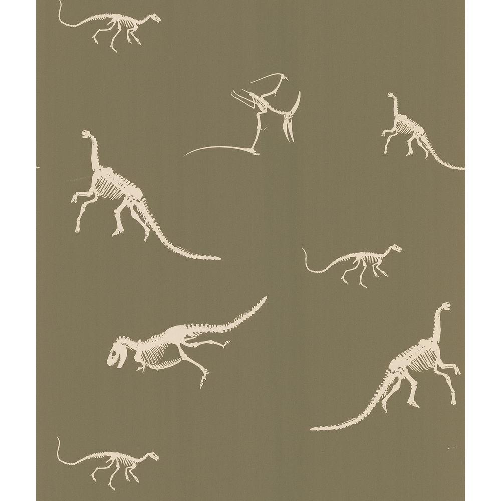 National Geographic Skeletons Wallpaper