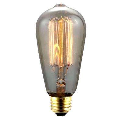 40-W Incandescent E26 Vintage Edison Light Bulb