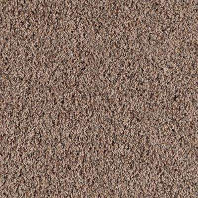 Carpet Sample - Thrill Seeker - Color Leather Bound Twist 8 in. x 8 in.