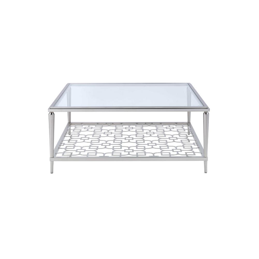 Naiya 40 in. Brushed Nickel Medium Square Glass Coffee Table with Shelf