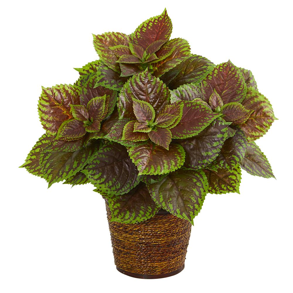 Nearly Natural 16 in. Coleus Artificial Plant in Basket (Real Touch)