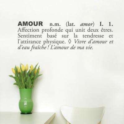(31 in x 10 in) Amour (french) Wall Decal
