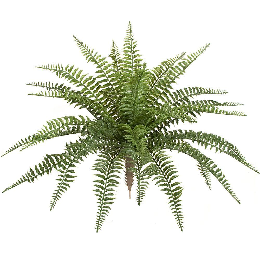 Plastic Outdoor Small Boston Fern Ef 130 The Home Depot