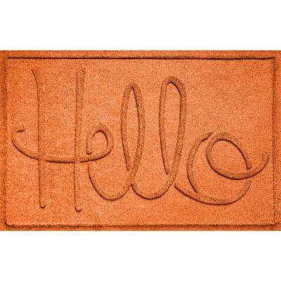 Simple Hello Orange 24 in. x 36 in. Polypropylene Door Mat