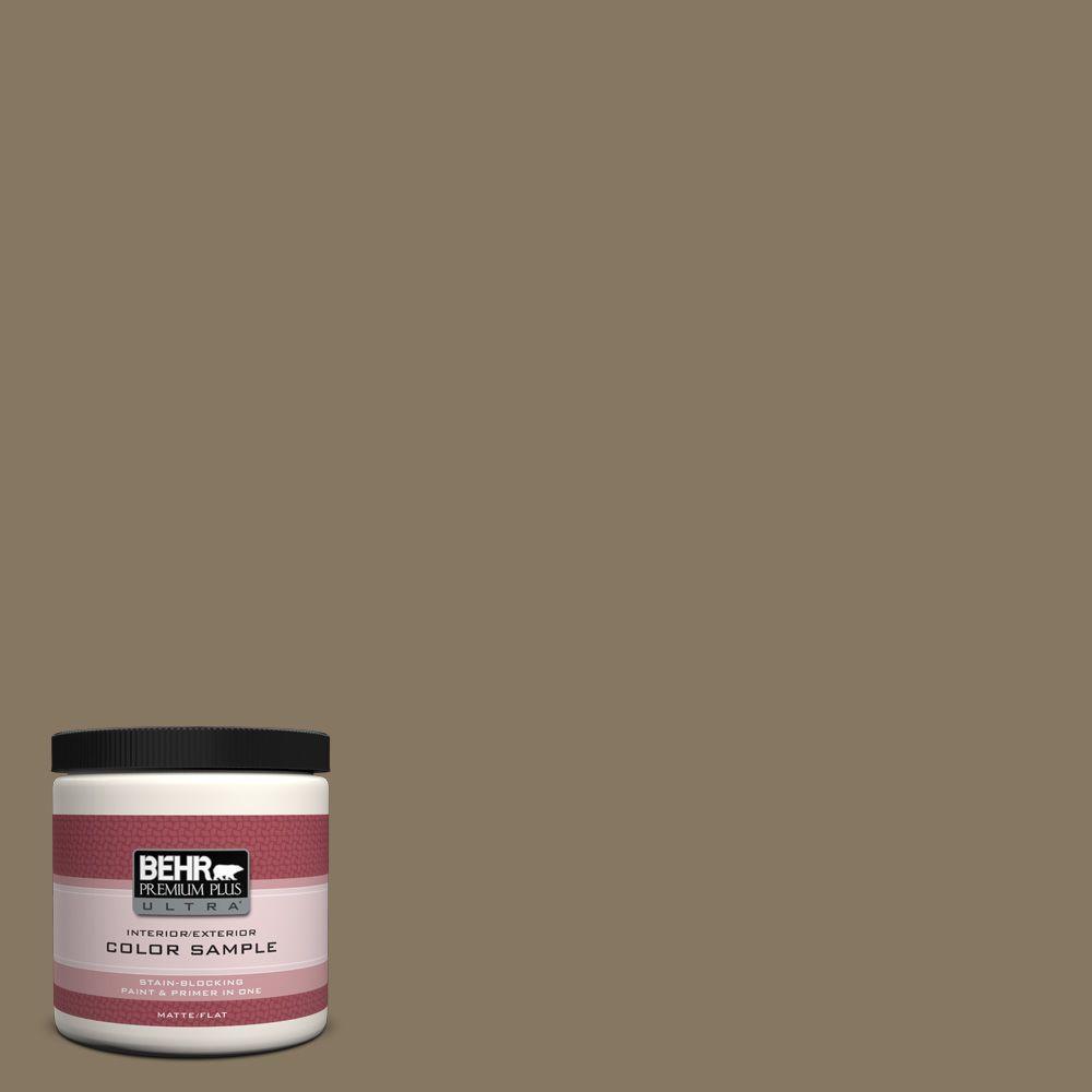 8 oz. #N310-6 Palm Desert Interior/Exterior Paint Sample