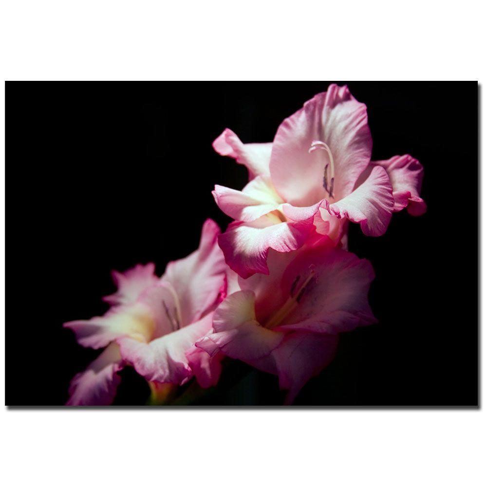 24 in. x 16 in. Pink Lily V Canvas Art