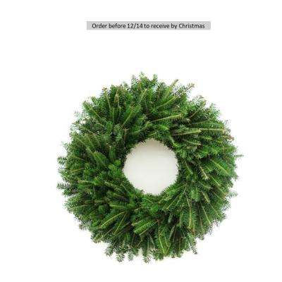 24 in. Fresh Evergreen Fraser Fir Christmas Wreath