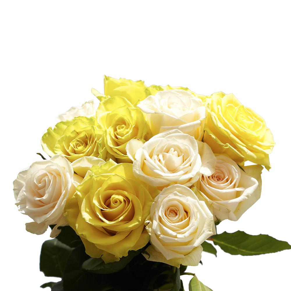 50 Stems of Roses 25 Yellow and 25 White