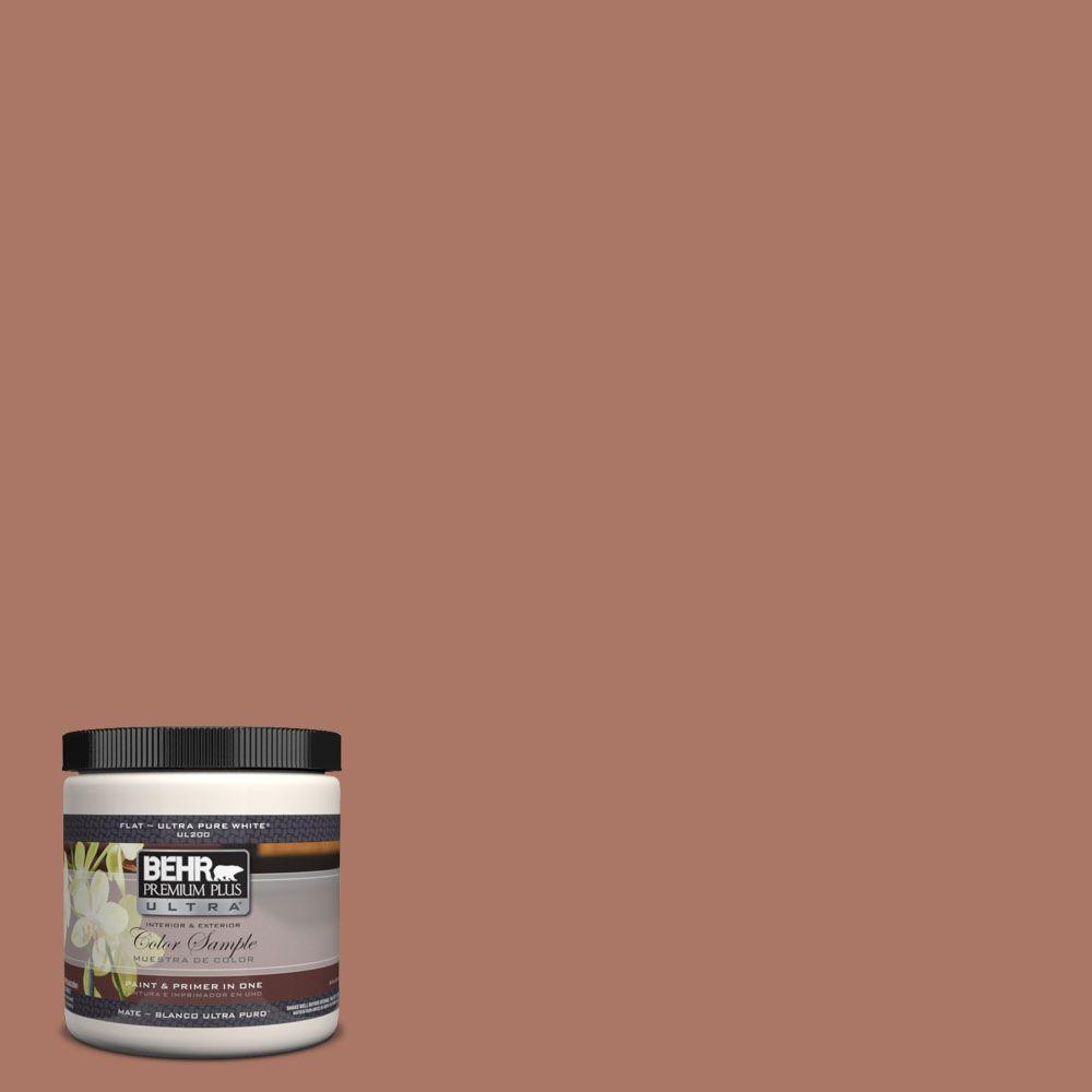 8 oz. #210F-6 Chutney Brown Interior/Exterior Paint Sample