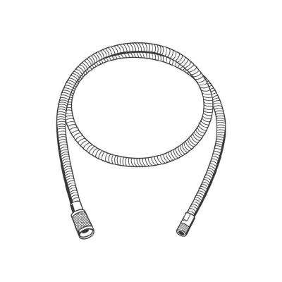 Ladylux/Europlus 59 in. Hose in StarLight Chrome