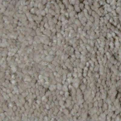 Carpet Sample - Gemstone II - Color Mill City Texture 8 in. x 8 in.