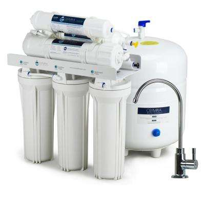 Alkaline Remineralization 6-Stage Under-Sink Reverse Osmosis Water Filtration System with 80 GPD Membrane