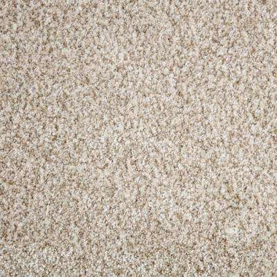 Trendy Threads I - Color Marvell Texture 12 ft. Carpet