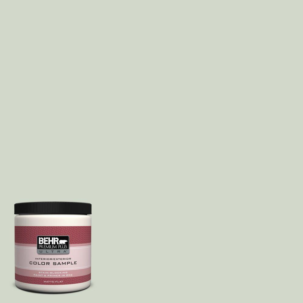 BEHR Premium Plus Ultra Home Decorators Collection 8 oz. #HDC-CT-25 Bayberry Frost Flat/Matte Interior/Exterior Paint Sample