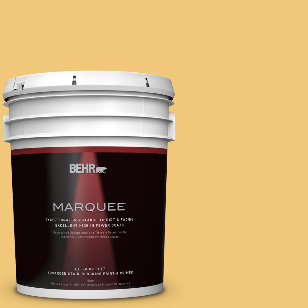 5-gal. #T14-19 Sunday Afternoon Flat Exterior Paint