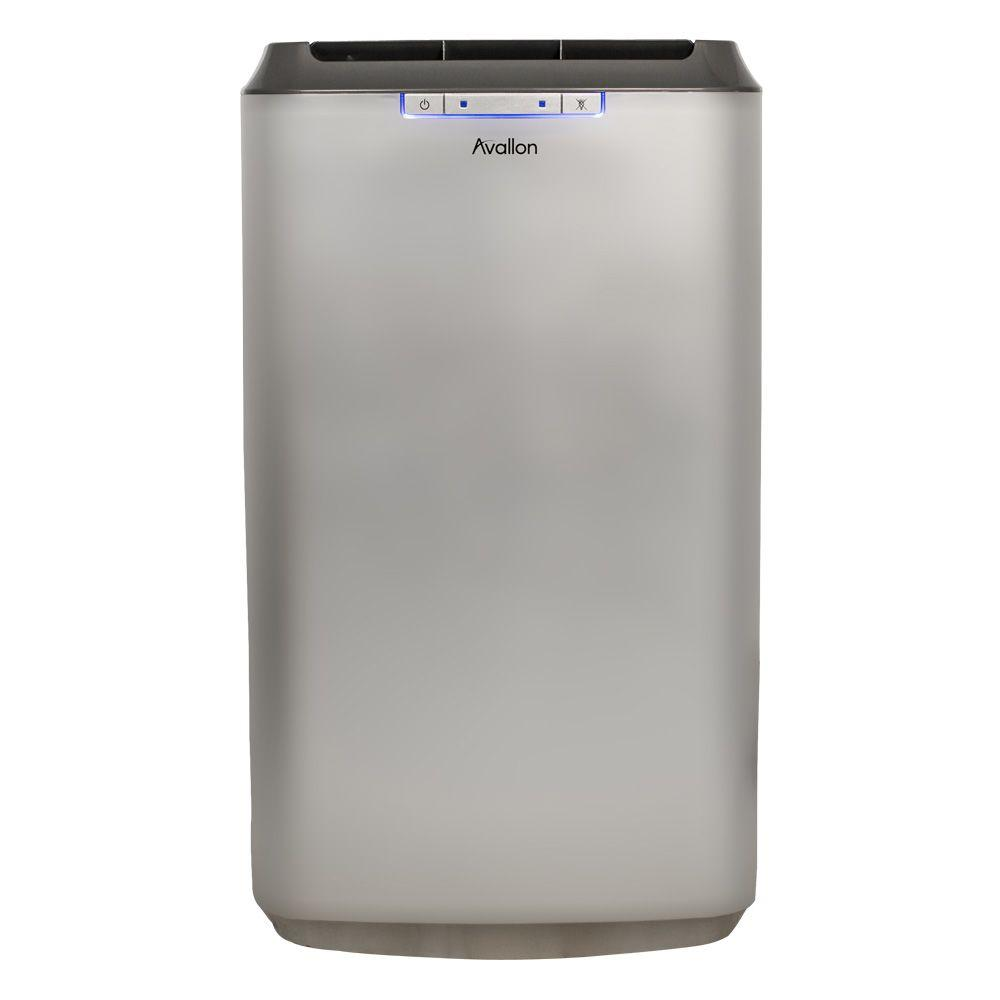 Avallon 12,000 BTU Dual Hose Portable Air Conditioner With Dehumidifying  InvisiMist Smart Drain Technology
