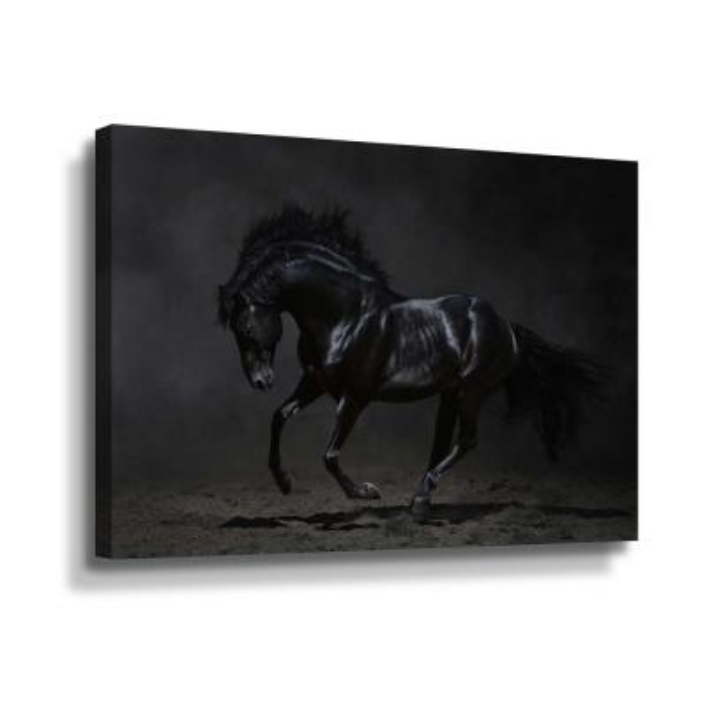 Onyx' by PhotoINC Studio Canvas Wall Art