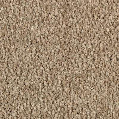 Best Rated Nylon Carpet Flooring The Home Depot,How Long Is A Dog Pregnant Before She Gives Birth