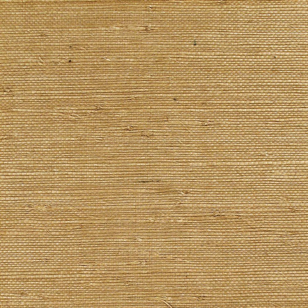 The Wallpaper Company 8 in. x 10 in. Pumpkin Reed Grass Wallpaper Sample-DISCONTINUED