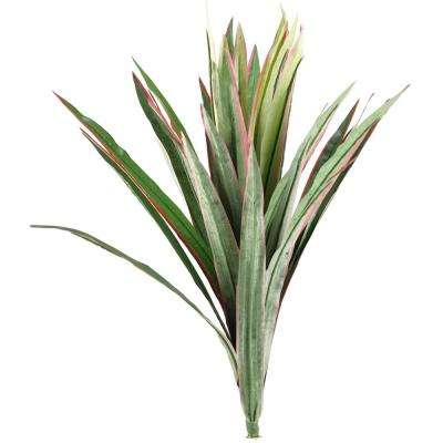 Indoor 21 in. Dracaena and Yucca Plant (Set of 3)