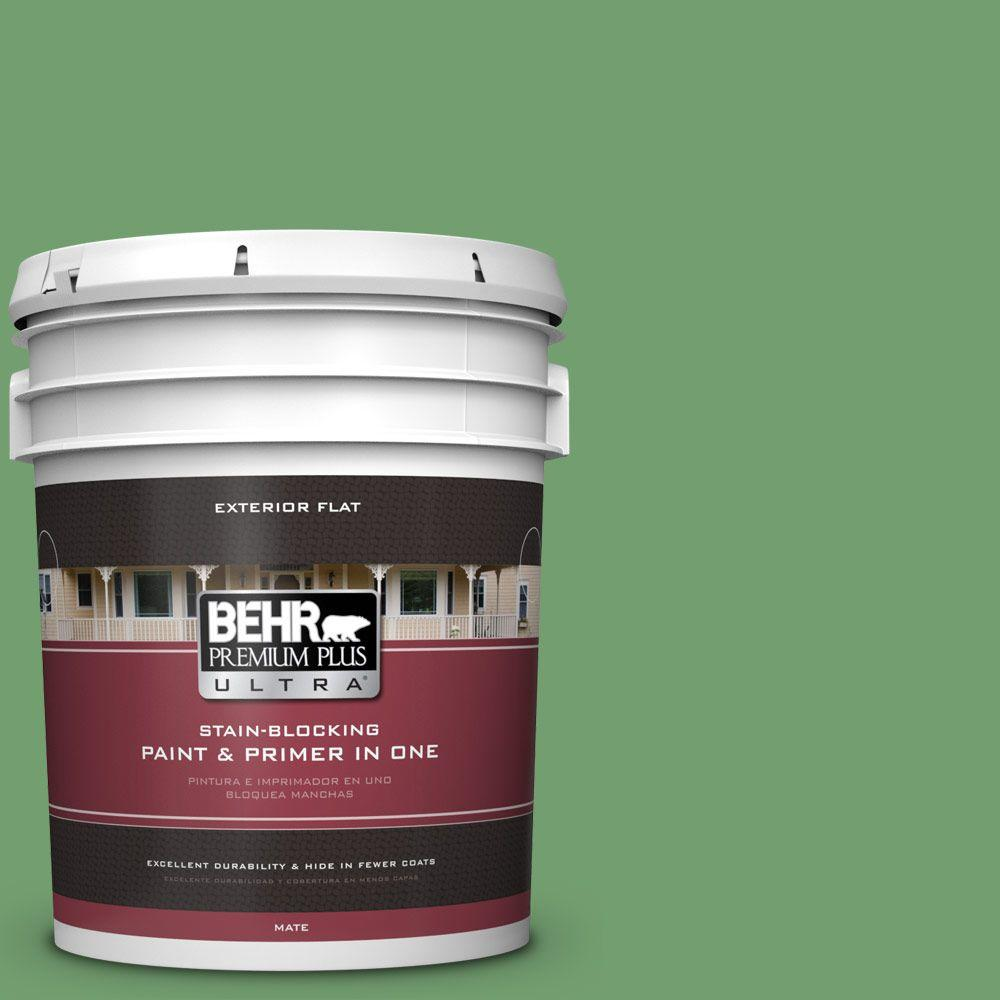 BEHR Premium Plus Ultra 5-gal. #450D-6 Shire Green Flat Exterior Paint