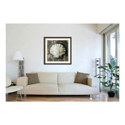 41.38 in. W x 41.38 in. H Marble Shell Series IV by Edward Selkirk Framed Wall Art