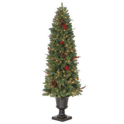 6 ft - Living Christmas Tree