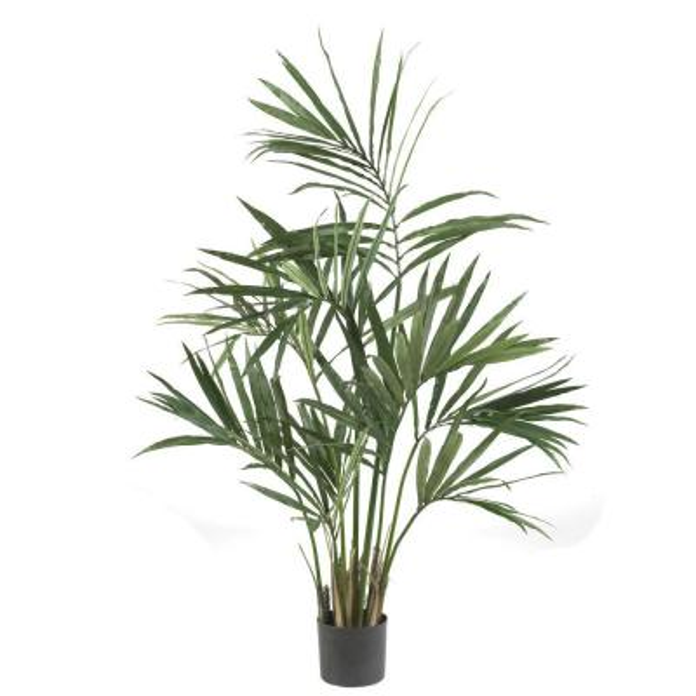 5 ft. Green Kentia Palm Silk Tree